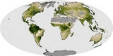 World Map netto primaire productiviteit